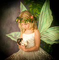 Fairy Day Examples