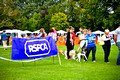 RSPCA K9 Party in the Park 2011